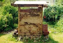 Wildbienen-Wand