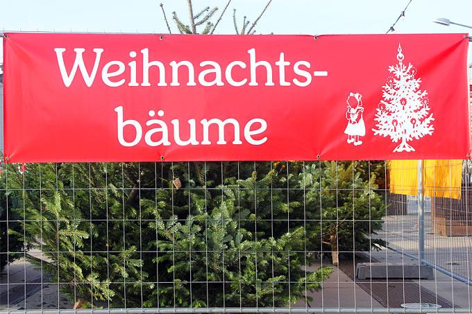 Weihnachtsbaum Fällen Berlin.Bio Weihnachtsbäume Nabu Berlin
