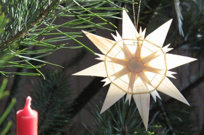 Weihnachtsbaum Berlin.Bio Weihnachtsbäume Nabu Berlin