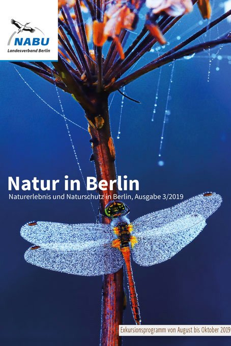 Natur in Berlin 3/2019 Titel