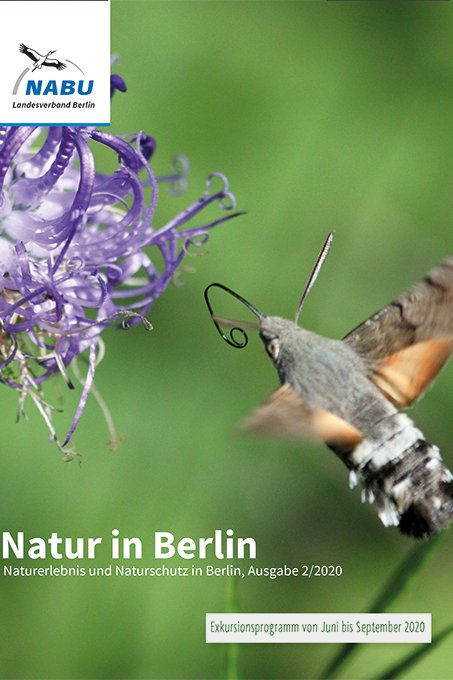Cover Natur in Berlin 2/2020