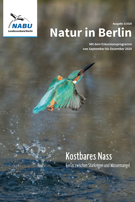 Cover Natur in Berlin 3/2020